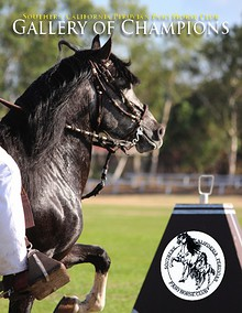 Southern California Peruvian Paso Horse Club
