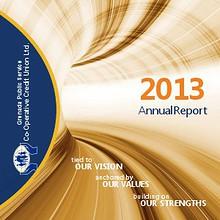 CREDUT UNION REPORT 2013.pdf