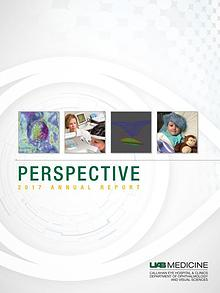 Perspective 2017 Annual Report