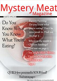Mystery Meat Magazine