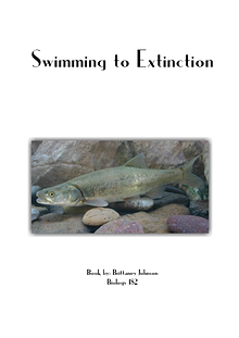 Swimming to Extinction