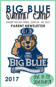 Big Blue Summer Camp