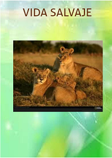 LIONS AND THEIR ENVIRONMENT
