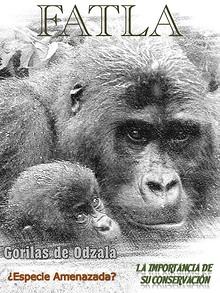 Gorilas de Odzala