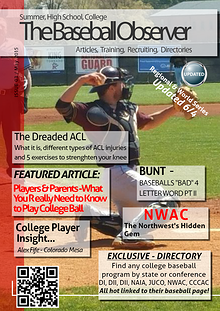 The Baseball Observer