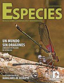 Especies 2-17 jul-sep