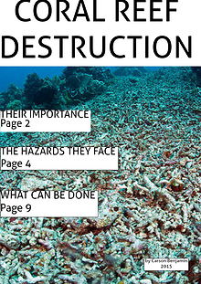Coral Reef Destruction- by C. Benjamin