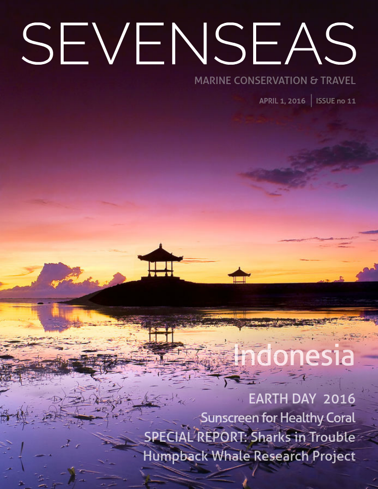 Issue 11, April 2016