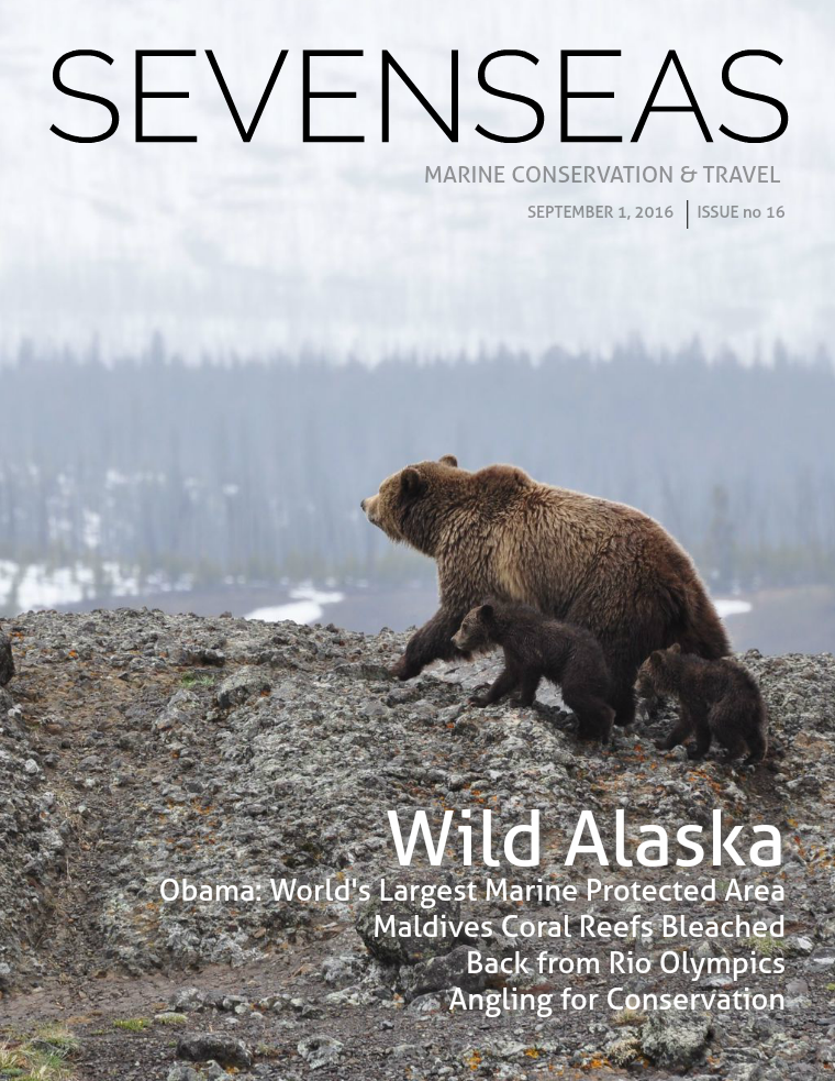 Issue 16, September 2016