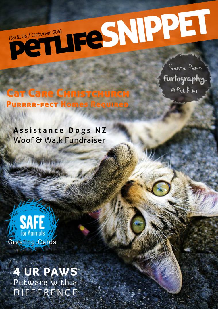 Issue 6 : October 2016