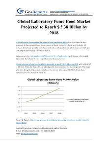 Global Laboratory Fume Hood Market Projected to Reach $ 2.38 Billion