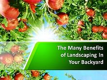 The Many Benefits of Landscaping In Your Backyard