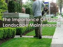 The Importance Of Good Landscape Maintenance