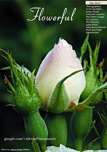 Flowerful Magazine