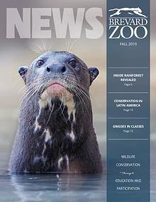 Brevard Zoo Membership Newsletter