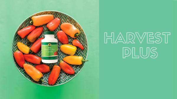 Product Slides Harvest Plus - ENG