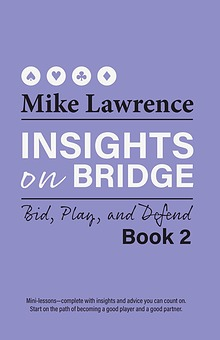 Insights on Bridge 2 (excerpt)