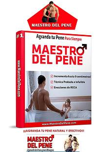MAESTRO DEL PENE PDF DESCARGAR GRATIS