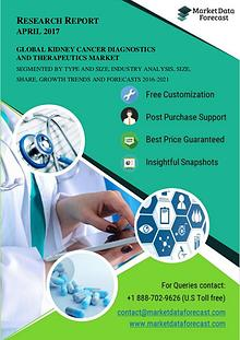 Kidney Cancer Diagnostics and Therapeutics Industry Analysis Report 2