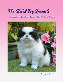 The Global Toy Spaniels