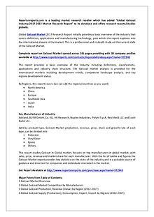 Global Gelcoat Industry 2017 Market Research Report-2022