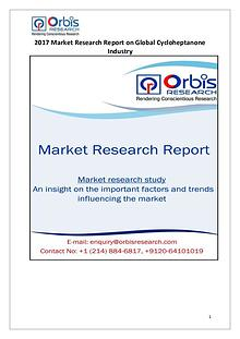 Global Cycloheptanone Industry Overview