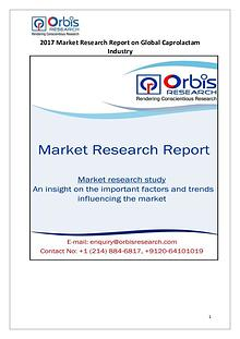 Global Caprolactam Industry Latest Report by Orbis Research