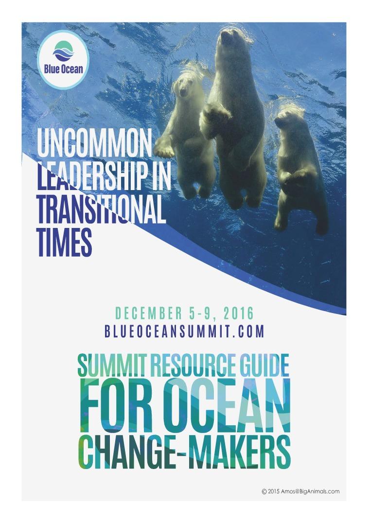 Blue Ocean Network Dr. Mikki McComb-Kobza