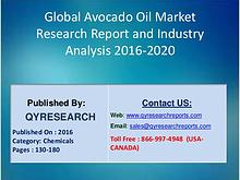 Avocado Oil Market to Cut Loose in North America, Europe, China
