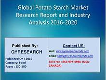 Potato Starch Market 2016 Awareness through Healthy Diet Stokes