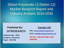 Global Polyamide 12 (Nylon 12) Industry 2016 Market Size