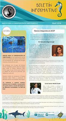 Boletín Informativo ACCP
