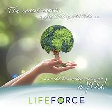 LIFEforce Brochure