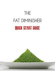 Fat Diminisher PDF / System