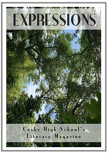 Expressions, Issue IV