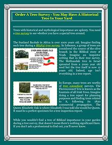Order A Tree Survey - You May Have A Historical Tree In Your Yard