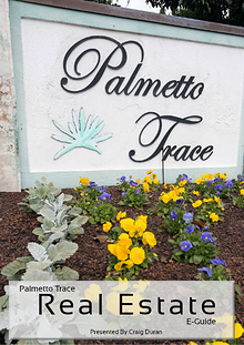 Palmetto Trace Real Estate e-Guide