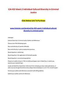 CJA 423 Week 2 Individual Cultural Diversity in Criminal Justice