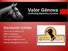 Hipodromos y caballos - Racetracks and horses
