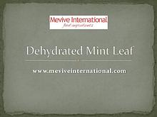 dehydrated mint leaf powder and whole supplier and exporter