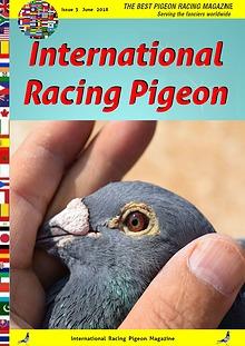 International Racing Pigeon