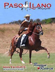 Paso Llano Magazine #10