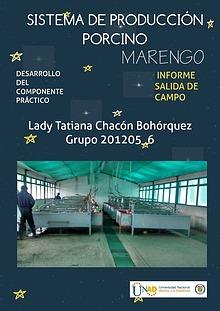 Informe práctica sistema de producción porcino_Lady Chacón