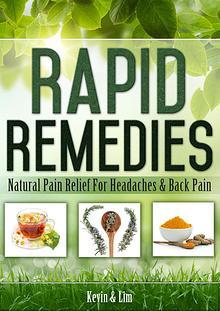 Master Lim: Pure Natural Healing PDF, Program Free Download
