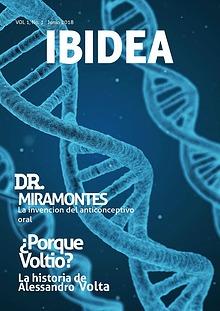 IBIDEA