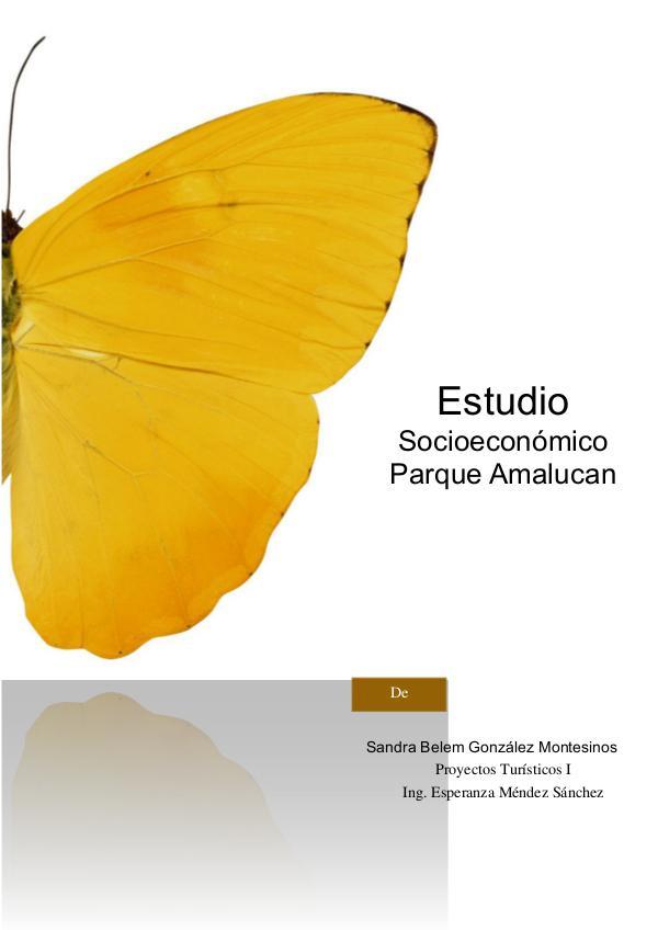 Estudio Socioeconómico Parque Amalucan Estudio socioeconomico