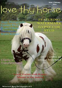 Love Thy Horse